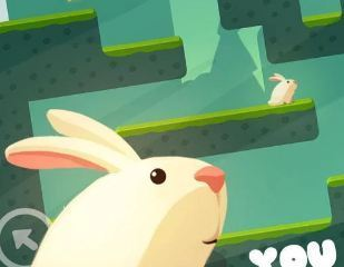 Greedy Rabbit Game
