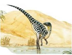 Dinosaur Leaellynasaura Coloring Page Game