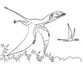 Dinosaur Dimorphodon Coloring Page Game