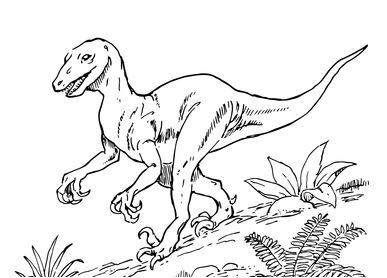 Dinosaur Deinonychus Coloring Page Game