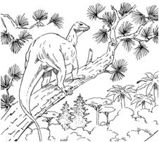 Dinosaur Megalosaurus and Hypsilophodon Coloring Page Game
