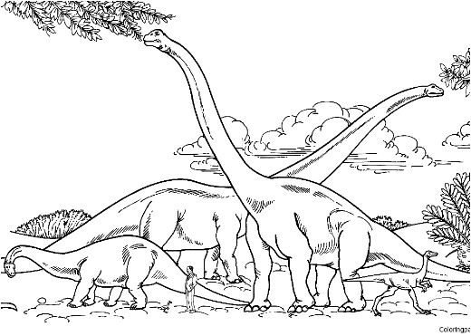 Barosaurus Hypselosaurus Brachiosaurus And Gallimimus Comparison With Human Coloring Page Game