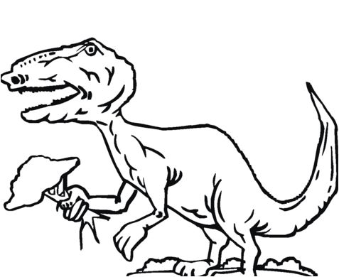 Tyrannosaurus Holds Tree Coloring Page Game