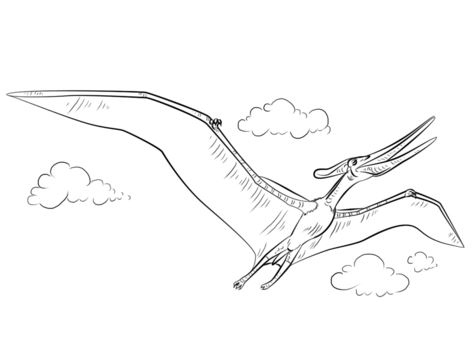 Pteranodon Flying Coloring Page Game