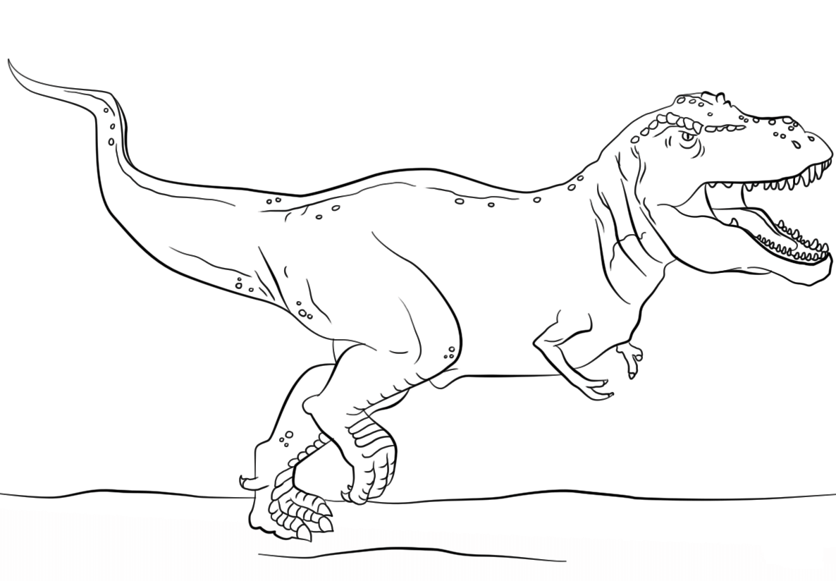 Dinosaur T Rex Coloring Page - Dinosaur Coloring Pages