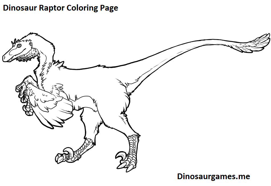 dinosaur raptor coloring page  dinosaur coloring pages