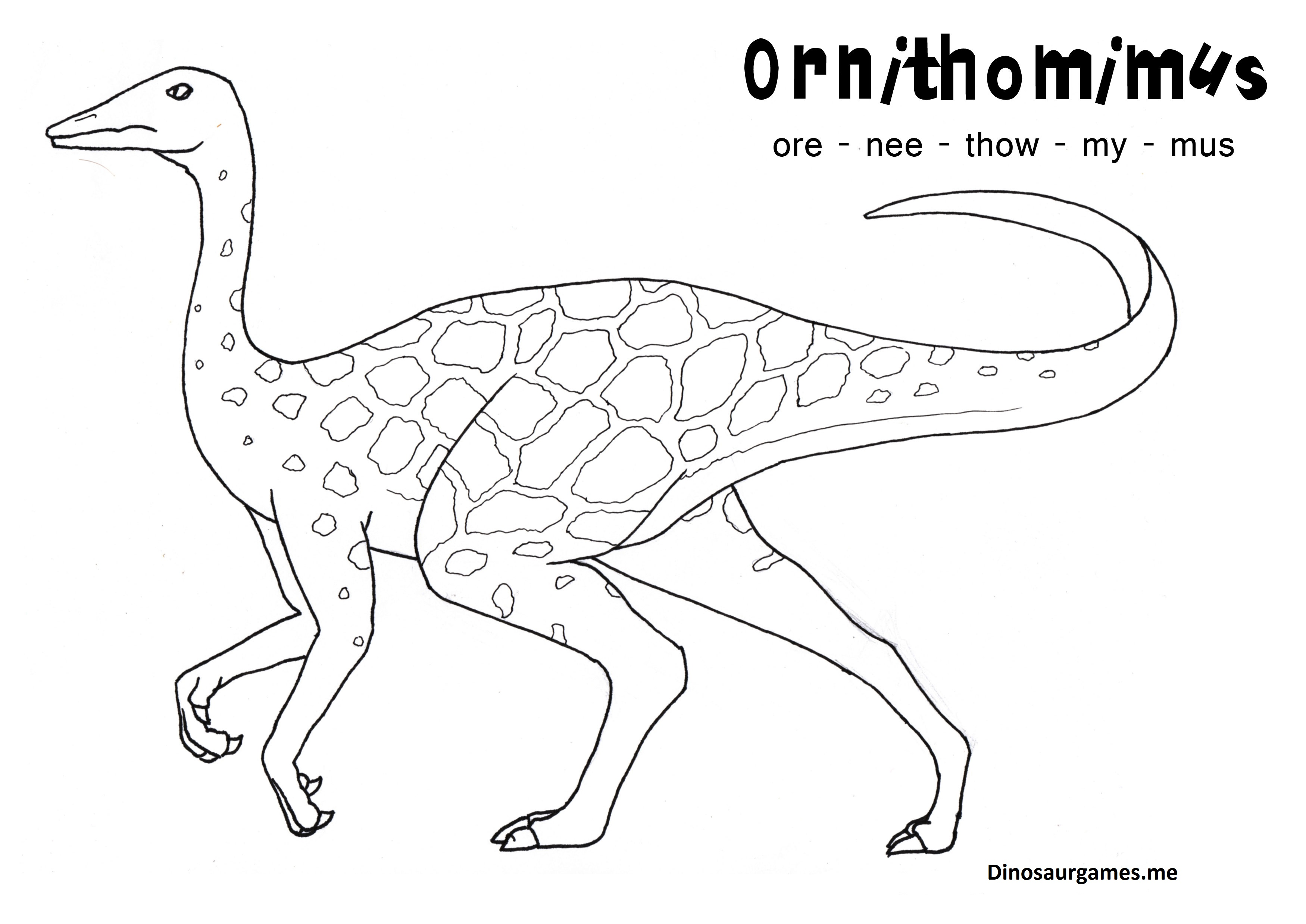 Dinosaur Ornithomimus 2 Coloring Page