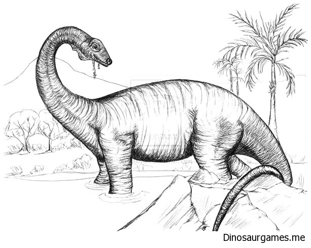 Sketch of Diplodocus Coloring Page