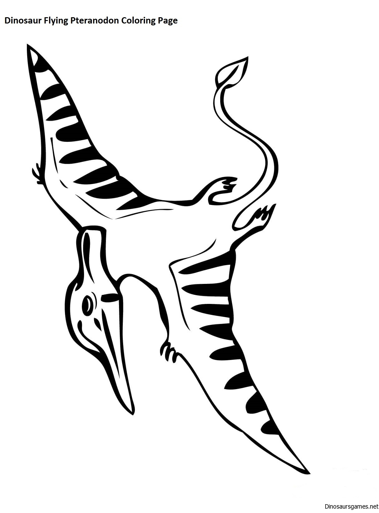 Dinosaur Flying Pteranodon Coloring Page