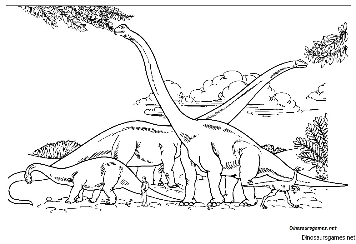 Barosaurus Hypselosaurus Brachiosaurus And Gallimimus Comparison With Human Coloring Page