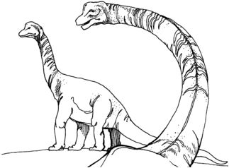Dinosaur Two Brachiosaurus Coloring Page Game
