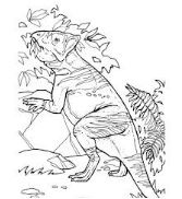 Dinosaur Leptoceratops Ceratopsian Coloring Page Game