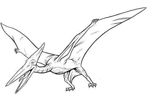 Dinosaur pterodactylus Coloring Page Game