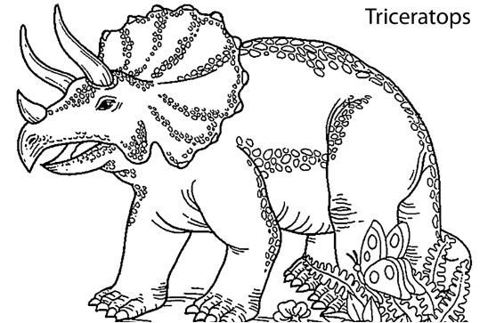 Triceratops Dinosaur Smiling Coloring Page Game