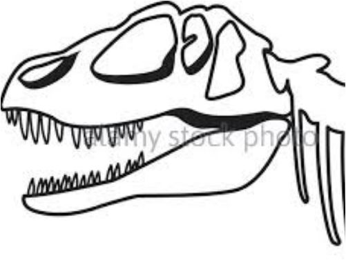 Dinosaur Head Skeleton Coloring Page Game