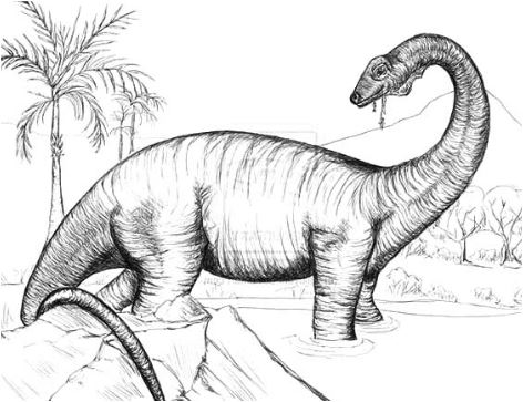 Sketch of Diplodocus Coloring Page Game