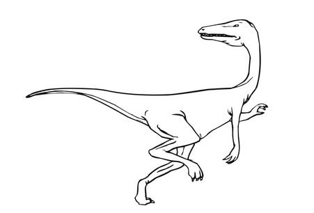 Featherless Velociraptor Coloring Page