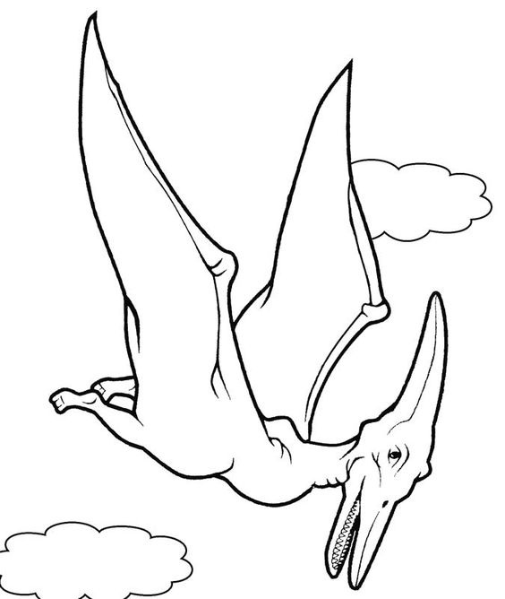 Dinosaur With Wings Coloring Game