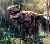 The forest dinosaurs hidden objects Game