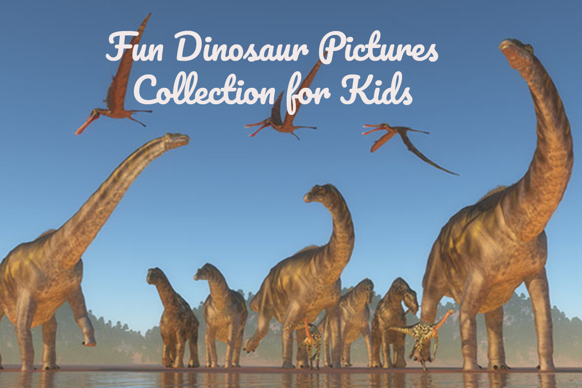 Fun Dinosaur Pictures Collection For Kids