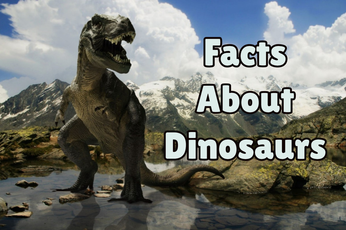Everything About Dinosaur That You Need To Know