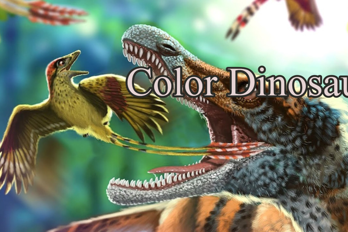 How To Teach Children About The Color Of Dinosaurs