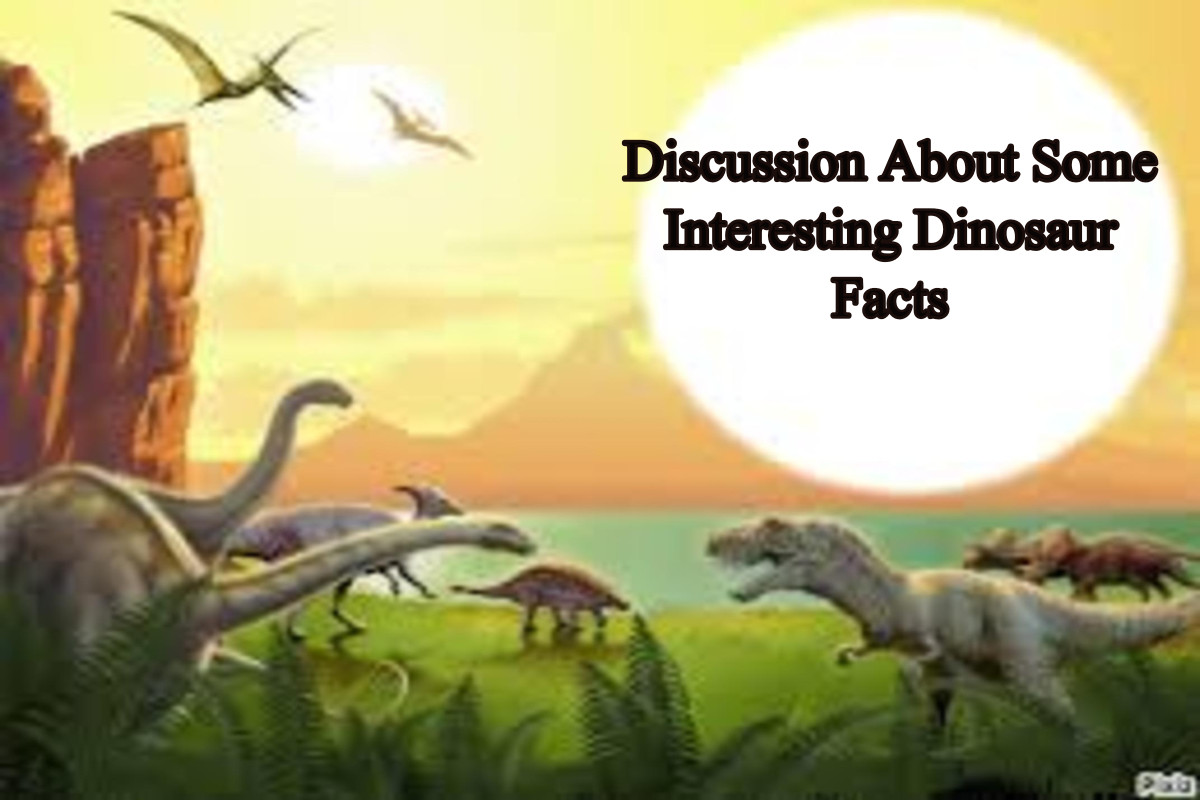 Discussion About Some Interesting Dinosaur Facts