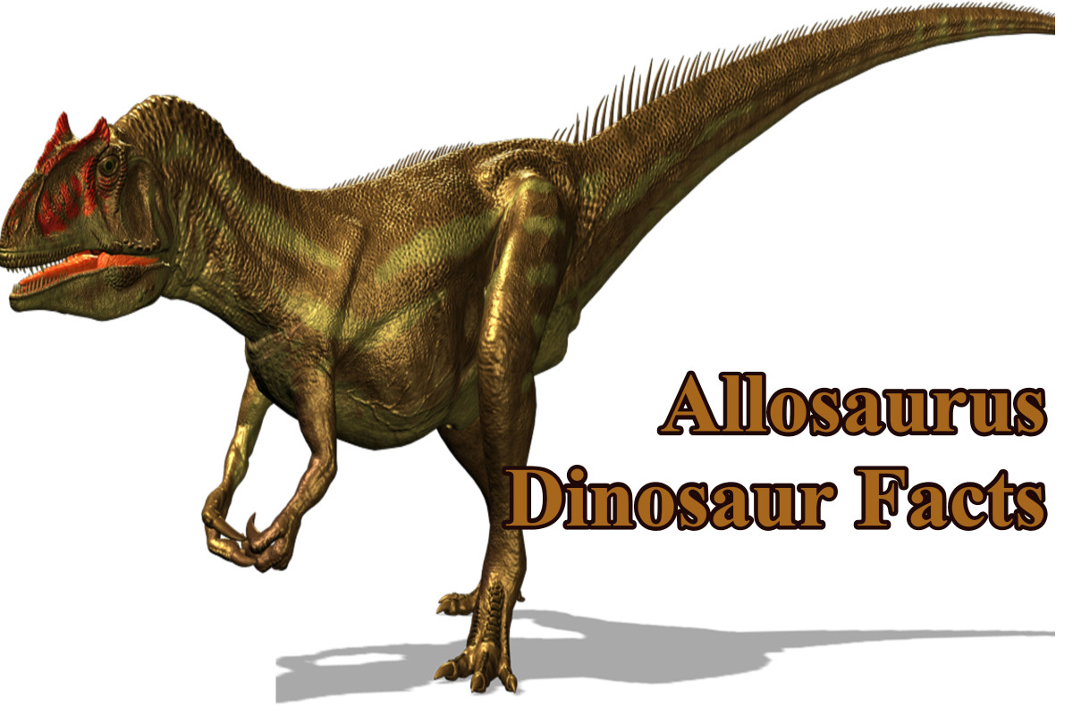 Allosaurus Dinosaur Facts