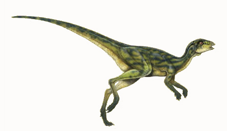 Everything We Need To Know About Hypsilophodon Dinosaur