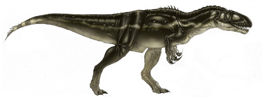 How Much Do You Know About Megalosaurus