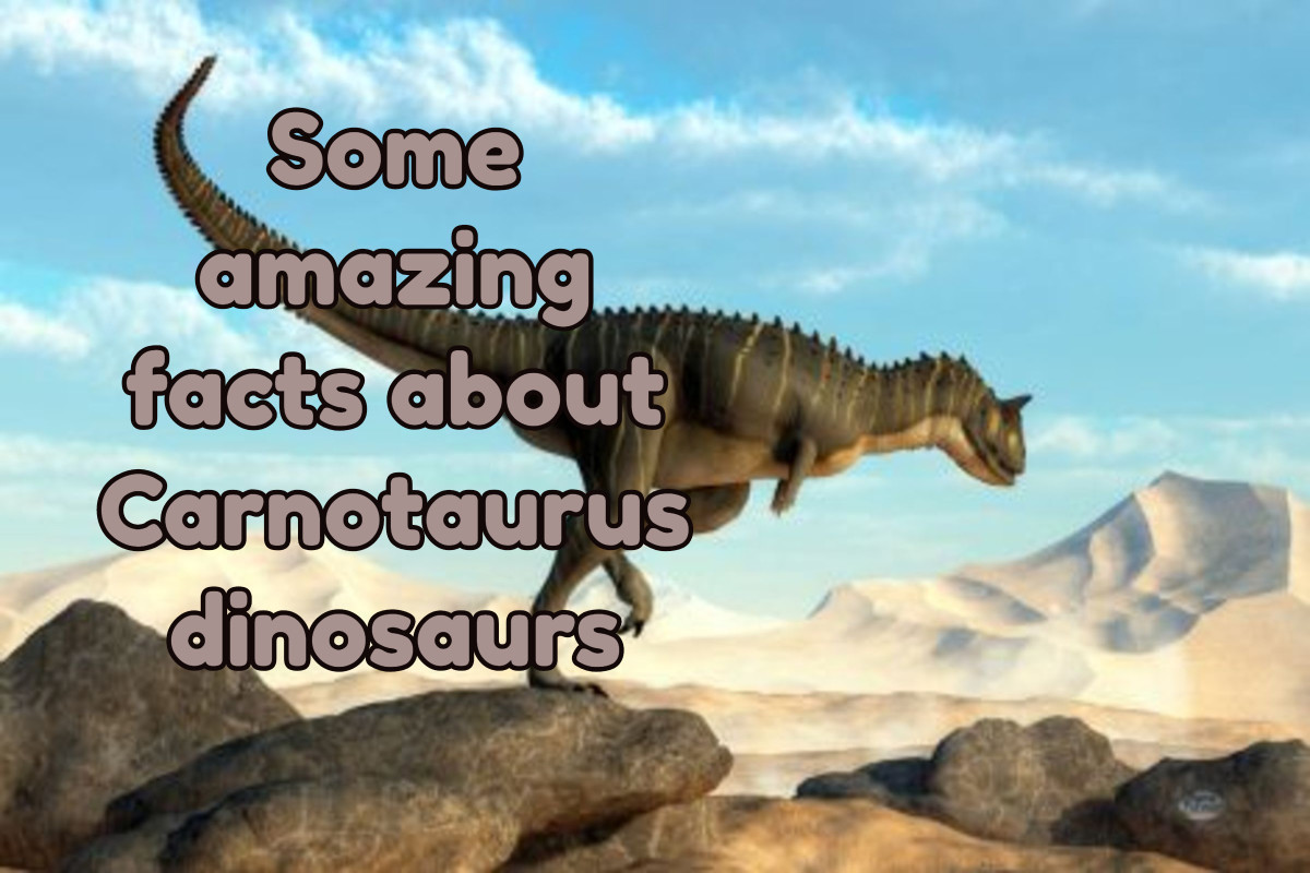 Some Amazing Facts About Carnotaurus Dinosaur