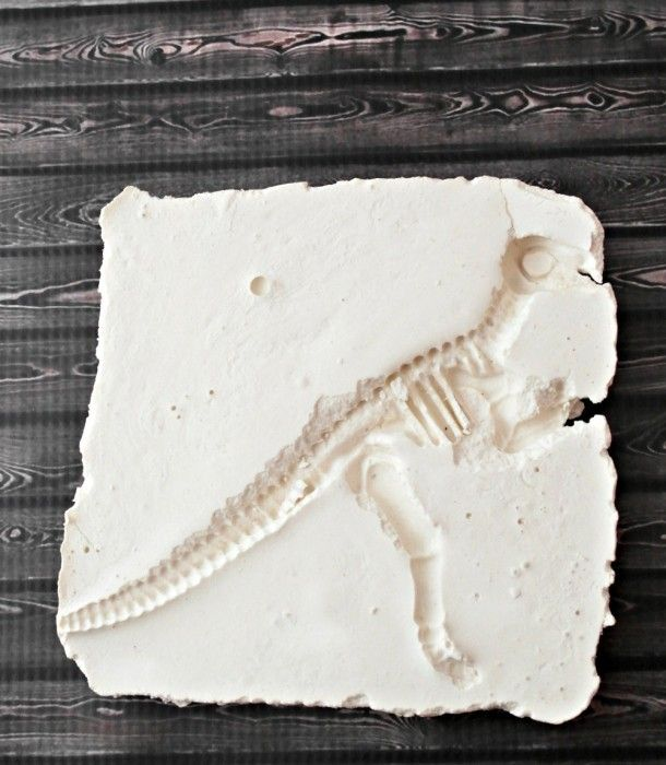 Excellent dinosaur fossil activities for children