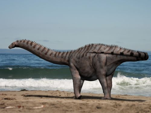 Brontosaurus Dinosaurs Facts and How to make coloring for them